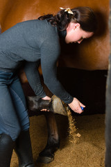 Cleaning horse hoof