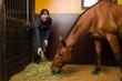 Woman feeding horse