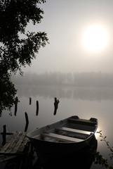 Foggy lake mystic silence