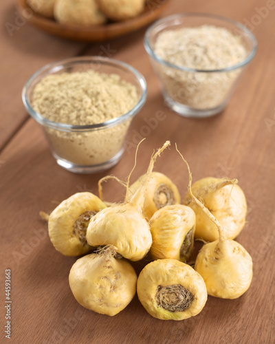 canvas print picture Maca roots or Peruvian ginseng (lat. Lepidium meyenii)