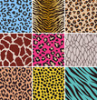 animal seamless skin pattern fabric