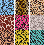 Fototapety animal seamless skin pattern fabric
