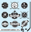 Vector Set: Ice Hockey League Labels and Stickers