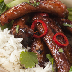 Pork Ribs with Rice