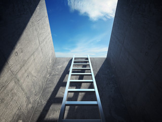 Ladder leading up