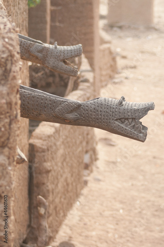 Gutter like crocodile, Mali, Africa.