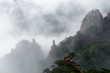 Huangshan (yellow mountain) and pine tree. Foggy day