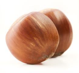 Hazelnut isolated on white background