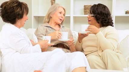 Multi Ethnic Female Seniors Social Morning