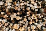 outdoors lumber woodpile poster