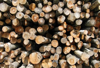 outdoors lumber woodpile