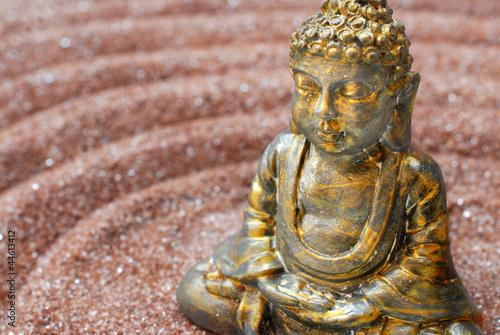 Buddhafigur im Zengarten