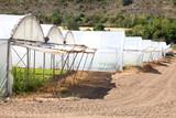 invernaderos para cultivar poster