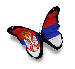 Republic of Serbia flag butterfly, isolated on white