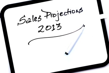 Sales Projections 2013