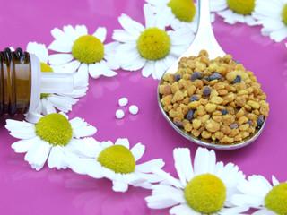 Kamillenblüten, Blütenpollen und Homöopathie