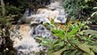 Brunch against waterfall