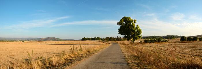 Sardinia, rural landscape