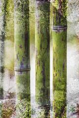 Grunge Bamboo backdrop