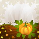Orange pumpkin vegetable with  leaves