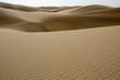 Desert dunes sand in Maspalomas Gran Canaria
