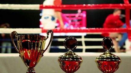 prize cups at background of fighters on action at boxing ring