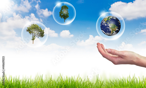 Eco concept : globe , tree in bubbles against the sun and the bl