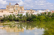 Mezquita Cathedral by the River in Cordoba