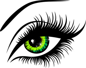 Vector illustration beautiful female green eye