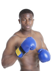 Portrait of a young boxer wearing boxing gloves in fighting stance over gray background
