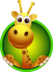 cute giraffe head cartoon