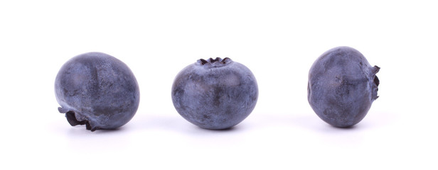 Three blueberries closeup on white background