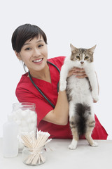 Portrait of an Asian female veterinarian holding cat against gray background