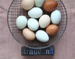 naturally colored eggs of Araucana hens with word