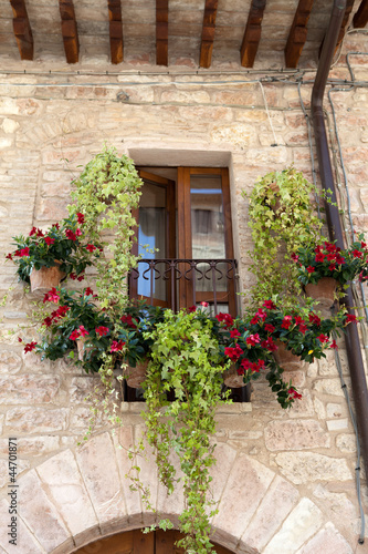 flowers hangs on the window of a home