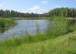Summer landscape: pond in the park