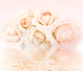 Bouquet di Rose - Rose Flowers Bouquet
