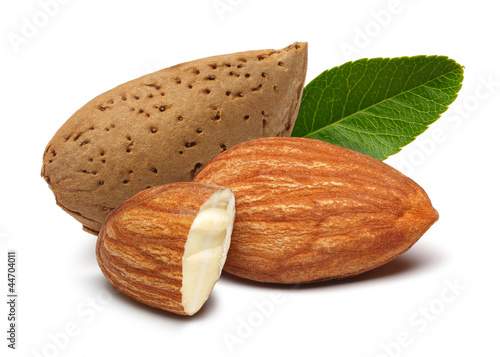 Almonds and leaves