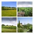 Campagne, paysage, tourisme, nature, vert, France