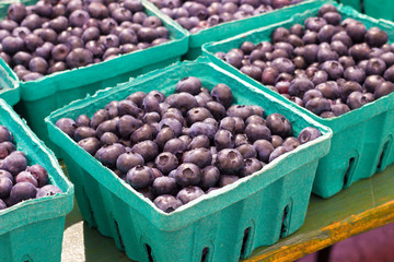 Cartons of fresh blueberries at farmers market