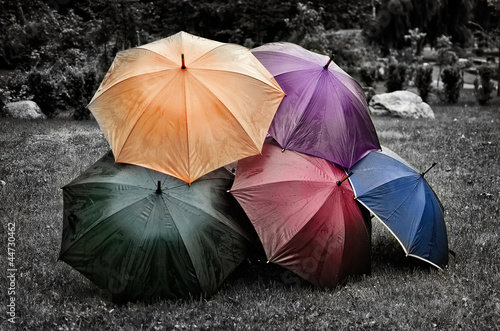 Five umbrellas on the grass. Black and white