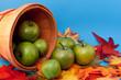 Apples Spilling Out of Basket