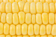 background of yellow sweet corn