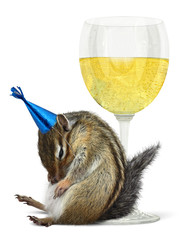 Funny drunk chipmunk, celebrate concept