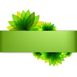Green Backgrounds Set With Abstract Flowers