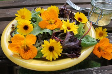 Pflücksalat mit Blüten von der Ringelblume und Kapuzinerkresse