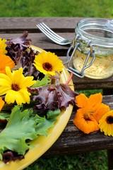 Pflücksalat mit Kapuzinerkresse und Calendula