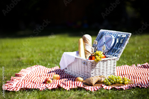 In de dag Picknick Picnic Time!