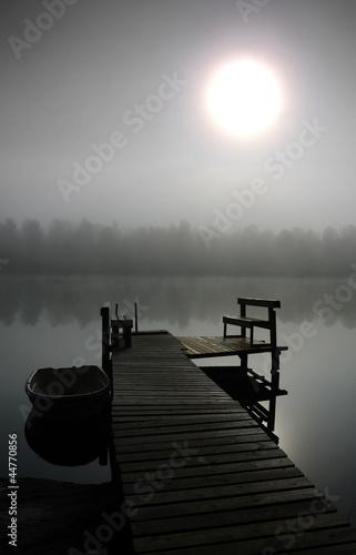 Fototapeten,nebel,nass,sonne,himmel