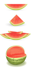 Watermelon Vectors